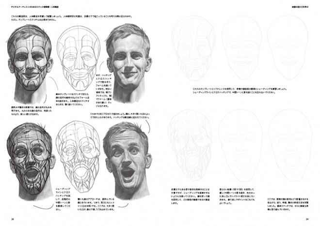 Sketch Workshop Anatomy05