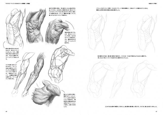 Sketch Workshop Anatomy06
