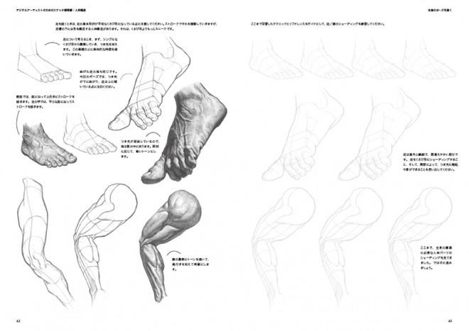 Sketch Workshop Anatomy07