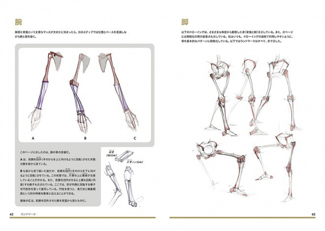 Figure Drawing jp 04