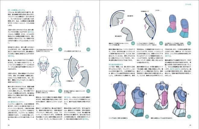 3d_anatomy_02